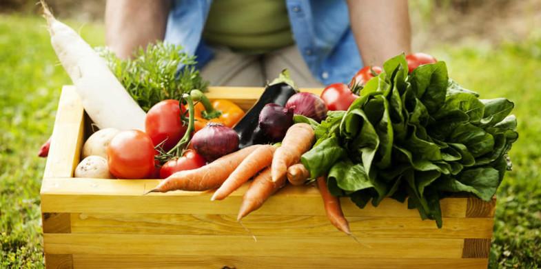 Inserindo Alimentos Orgânicos Na Alimentação Dos Filhos