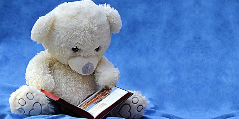 Hortolendo: Festa Literária Distribui 25 Mil Livros Em Hortolândia